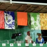 village colors & judges